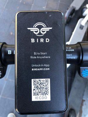 Bird E-Scooter mieten
